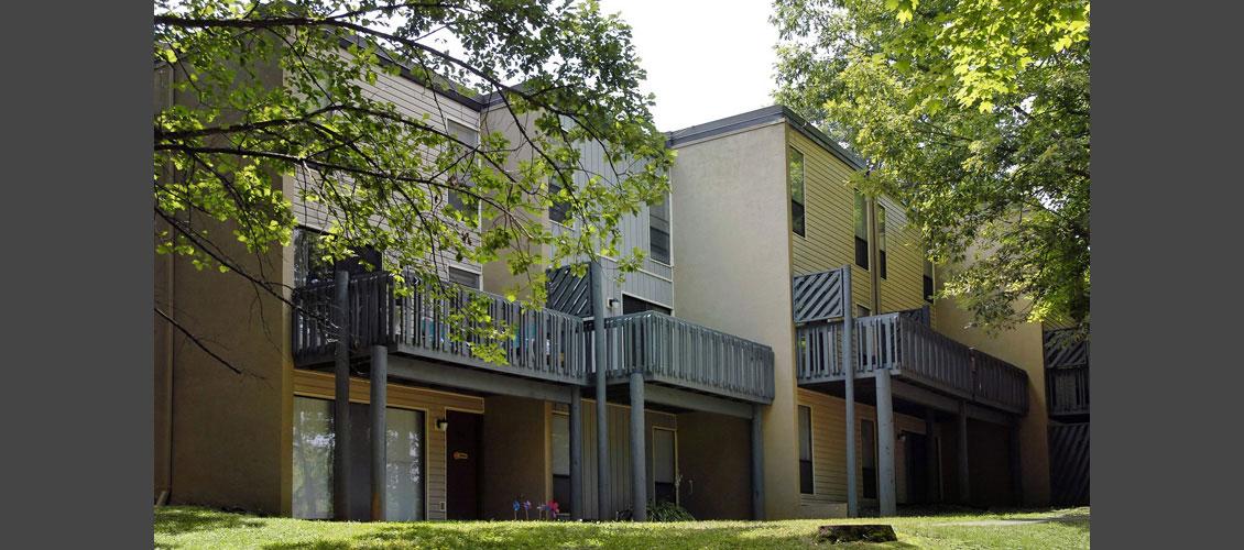 university of tn application fee